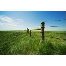 Как установить земельные границы по закону?